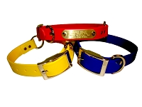 "1"" Dayglo Dog Collar With O-Ring  Sizes 19"