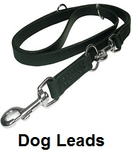 coon dog leash leads