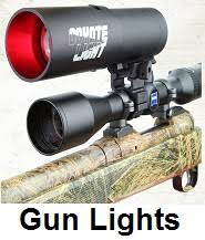 gun lights