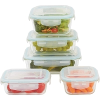 10pc Locking Glass Storage Container Set
