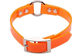 1 inch Dayglo Dog Collar With O-Ring Multiple Colors